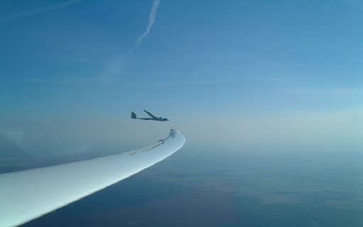 wing-other-glider_1.jpg